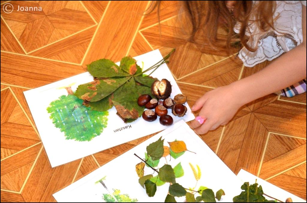 dopasowanie owoców