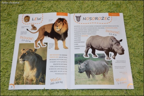 Zwierzęta z różnych stron świata