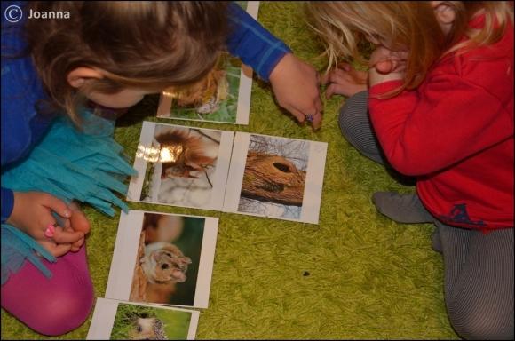 dopasowanka zwierze - zimowe legowisko