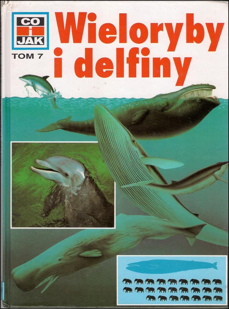 Wieloryby i delfiny