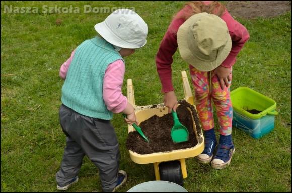mieszanie ziemi z kompostem