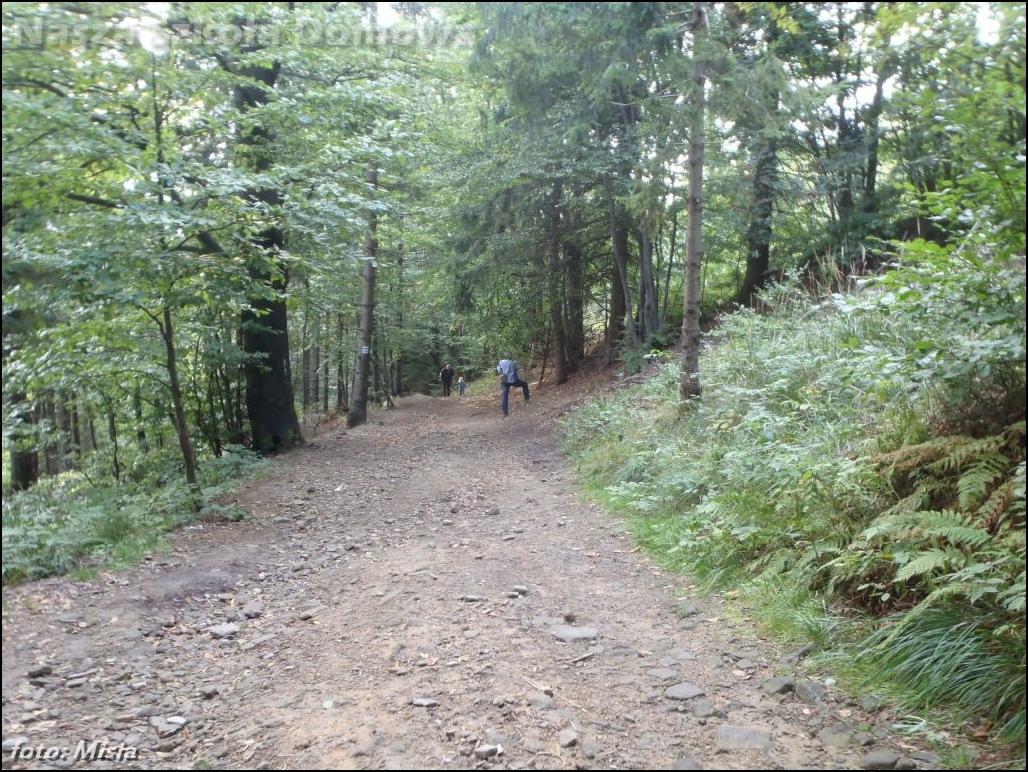Górska ścieżka