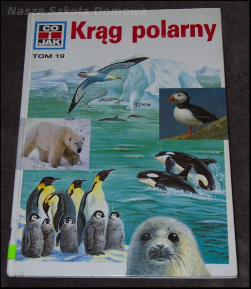 Krąg polarny - okładka