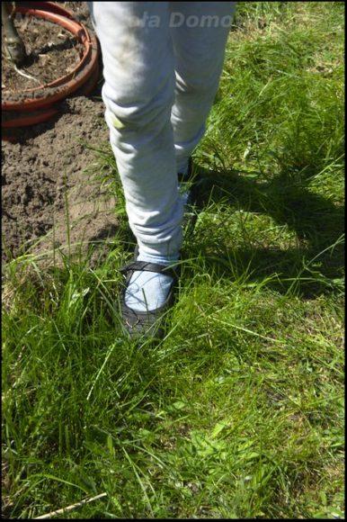 pomiar trawnika