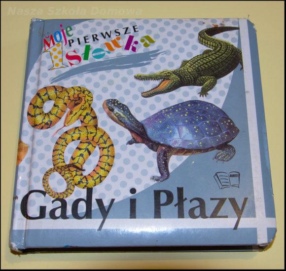 Gady i płazy - książka