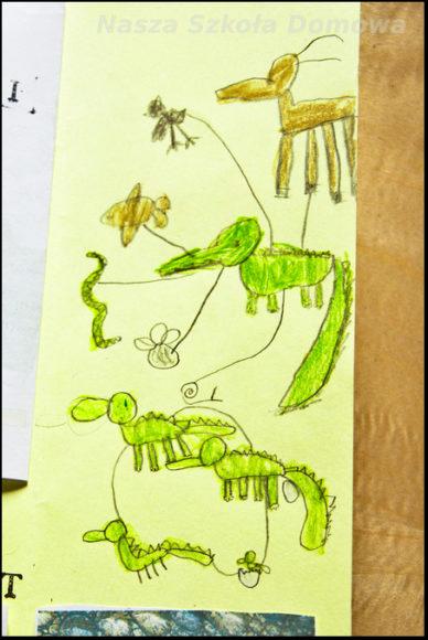 krokodyle - odżywianie i cykl życiowy