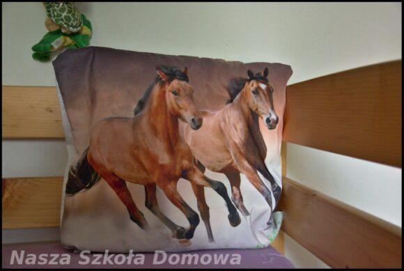 poduszka z końmi