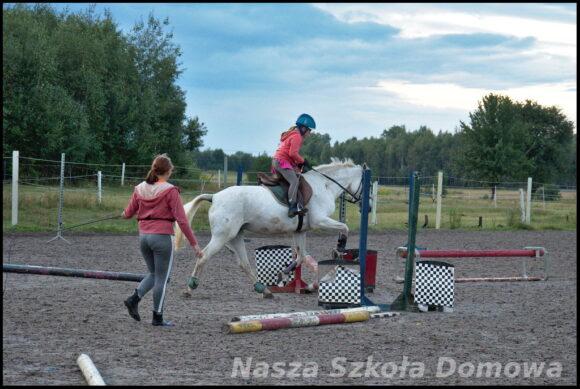 Lekcja jazdy konnej - skoki