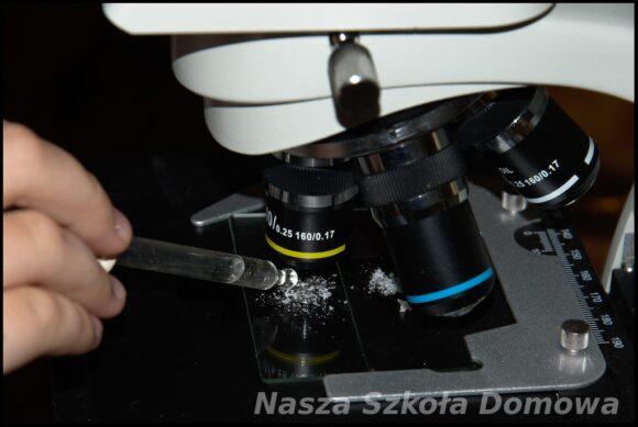 mikroskop - proces rozpuszczania soli w wodzie